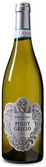 Antica Vigna Pinot Grigio delle Venezie