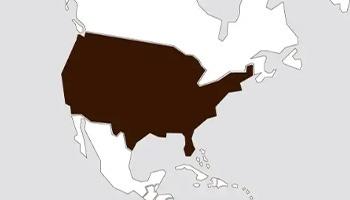 1980 De Verenigde Staten