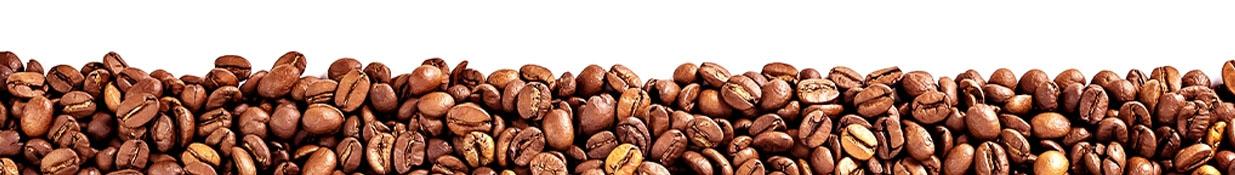 Arabica vs Robusta. Koffiebonen. Wat is het verschil?